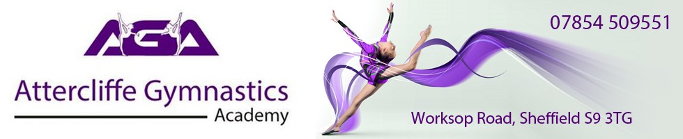 24/8 - 24/9 Sheffield Gynastics
