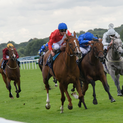 Win tickets to the William Hill St Leger Festival thumbnail