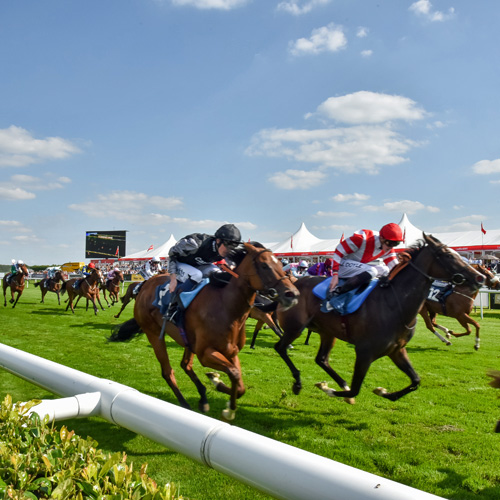 Win a pair of County Enclosure tickets to the Racing Post Trophy at Doncaster Racecourse thumbnail