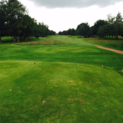 Job vacancy at Harrogate Golf Club thumbnail