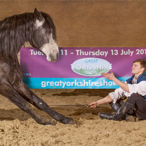 The Great Yorkshire Show thumbnail