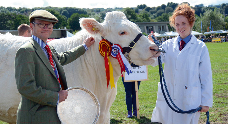 Bakewell Show to return in 2017 supporting image