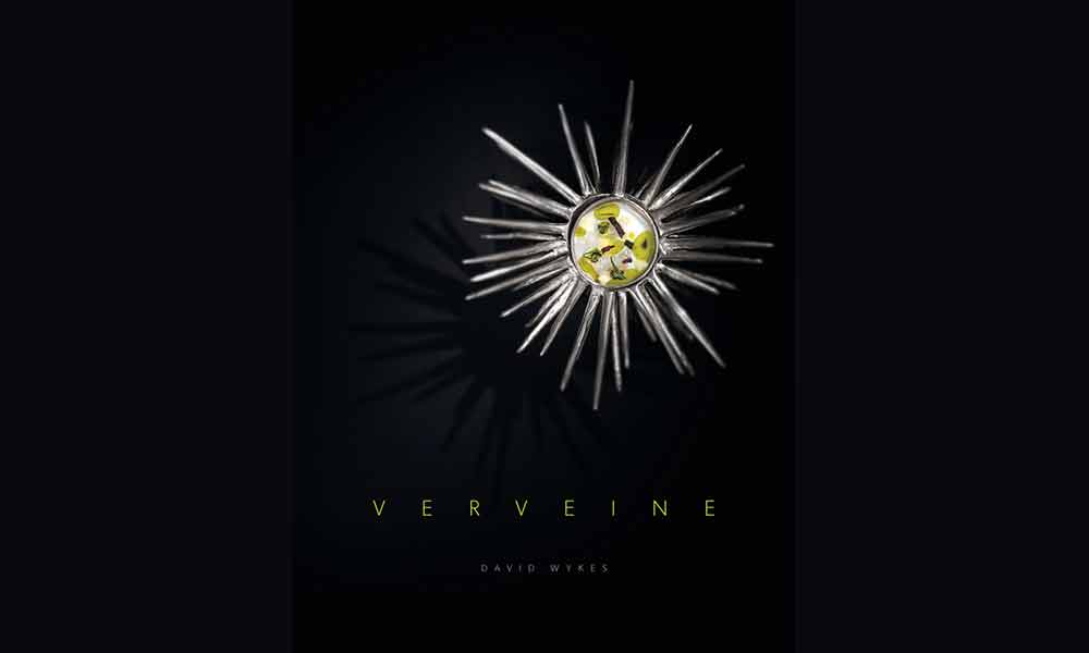 David Wykes discusses his new book, 'Verveine' supporting image