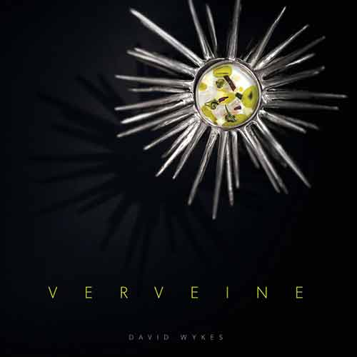 David Wykes discusses his new book, 'Verveine' thumbnail