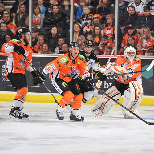 Sheffield Steelers announce home fixtures thumbnail