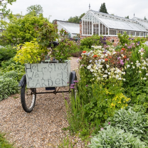 Helmsley Walled Garden launches 'Our Secret Garden' campaign thumbnail