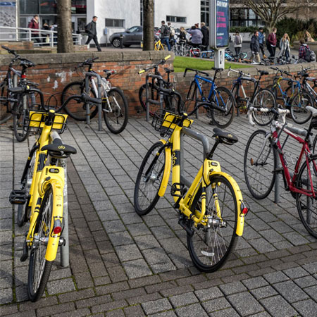 ofo celebrating 'successful launch'  Thumbnail