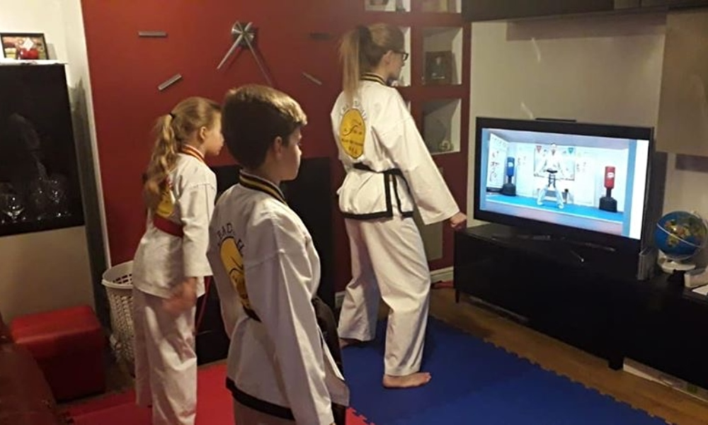 Lynx Black Belt Leadership Academy: Helping Families Keep Fit at Home supporting image